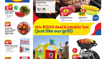 Lidl Weekly Ad May 26 - June 1, 2021 Preview Ads For Next Week